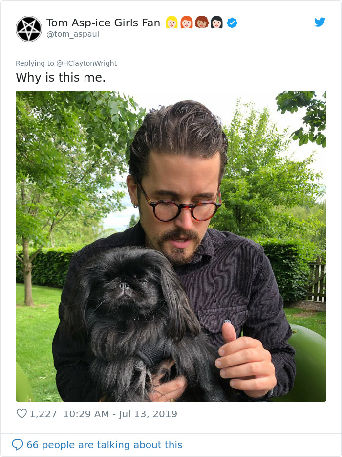 Owners-Look-Like-Their-Pets-Hair-Style