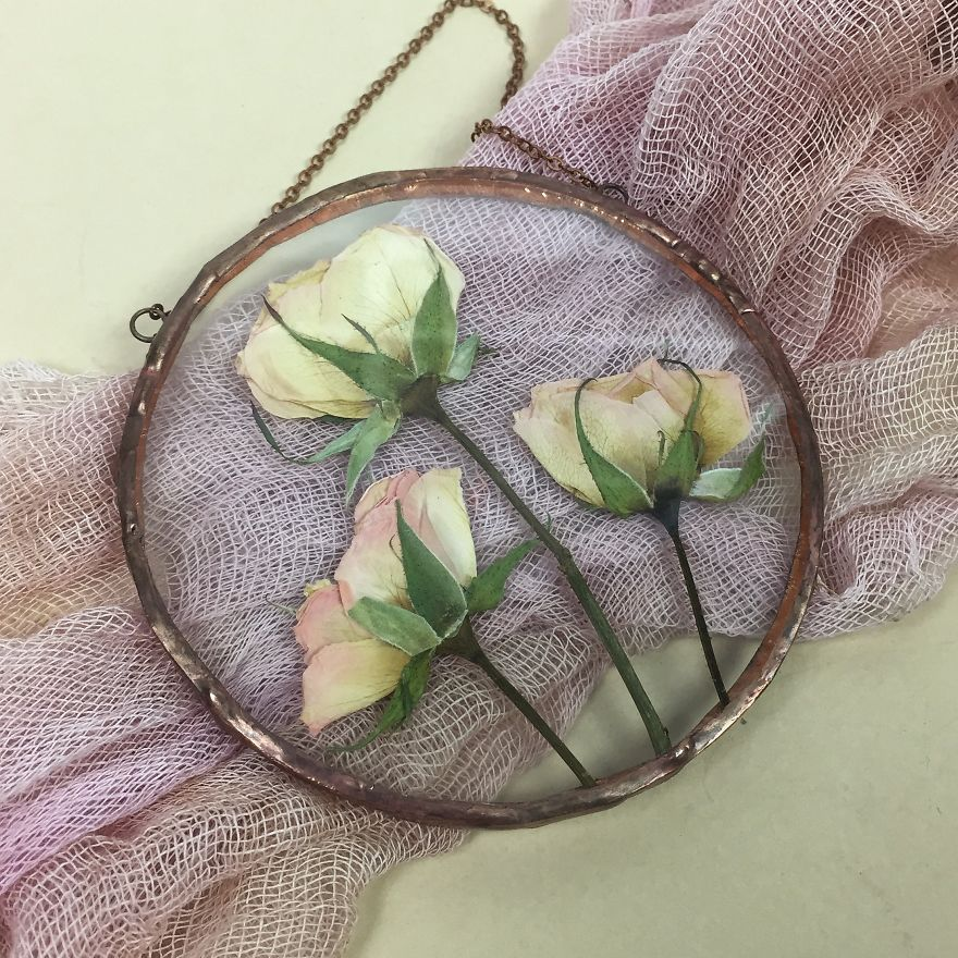 Flowers In My Life: How I Learned Many New Things Thanks To One New Hobby