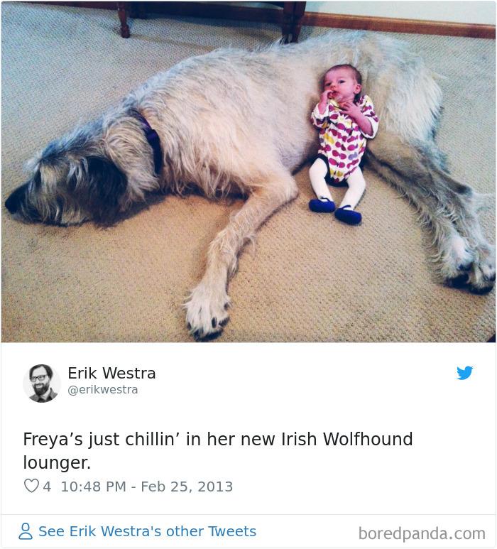 Irish Wolfhound Lounger