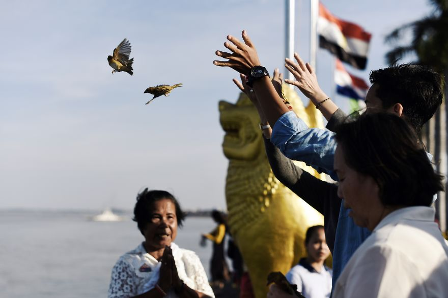 Releasing Birds For Hope