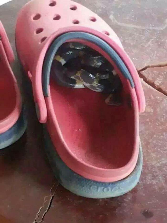 Mira siempre antes de ponerte el calzado