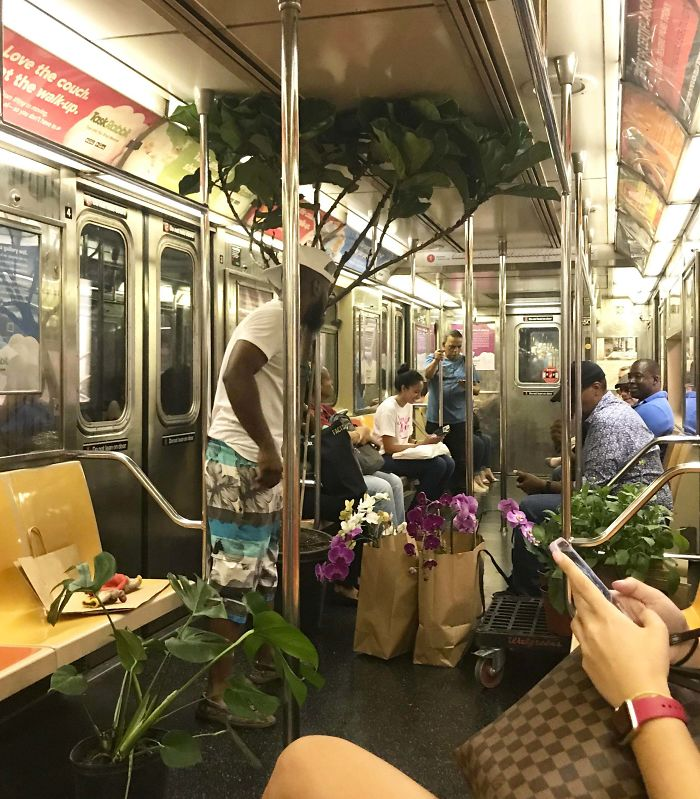"Thought Of You All When I Saw This Guy Selling Plants On My Subway Ride Home. He Kept Saying Things Like ""I Don't Sell Weed, I Just Sell Tropical Plants"""