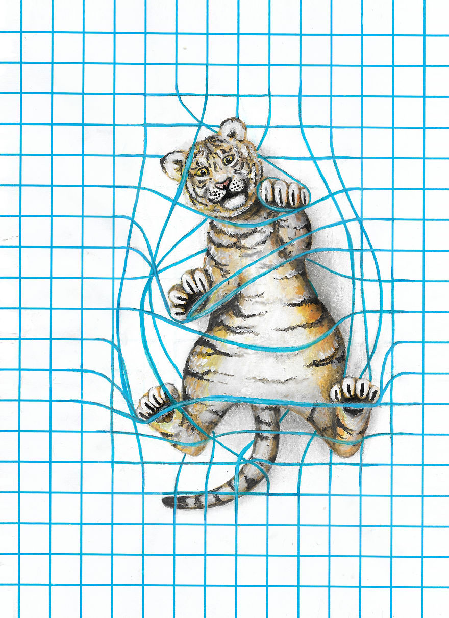 my 8 animal drawings on lined  dotted  and graph paper are
