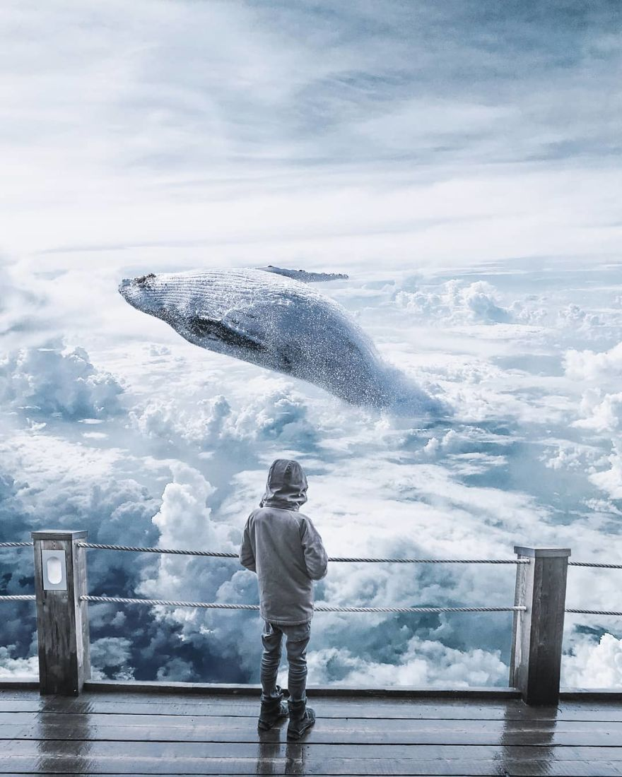 Whale Cloud