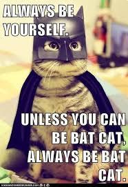 bat-cat-Copy-5d27574d8c130.jpg