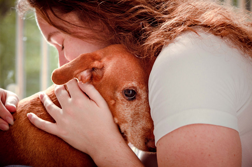 Rescue Dogs Charity Category 3rd Place Winner, 'A Look That Embraces' By Luciana Veras, Brazil