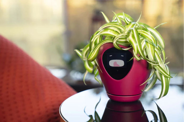 This Planter Turns Your Plants Into Tamagotchi-Like Pets
