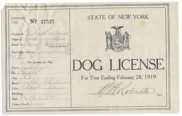 """Found A Dog License From 1919 In """"The Oregon Trail"""""""