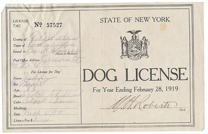 """Licencia para tener perro de 1919 dentro de """"The Oregon trail"""""""
