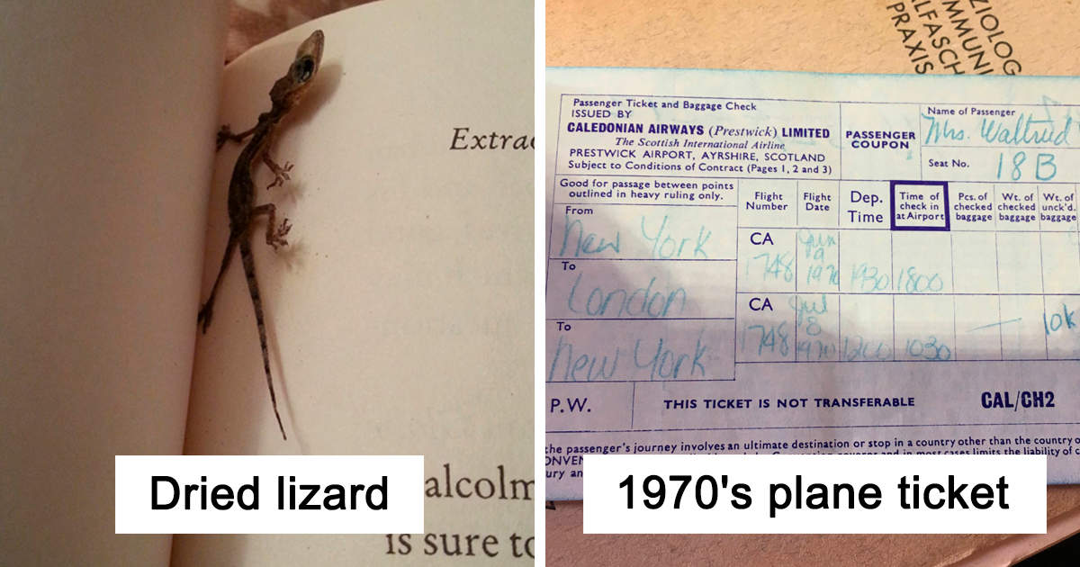 40 Times People Were So Surprised By The Things They Found In Second-Hand Books, They Just Had To Share