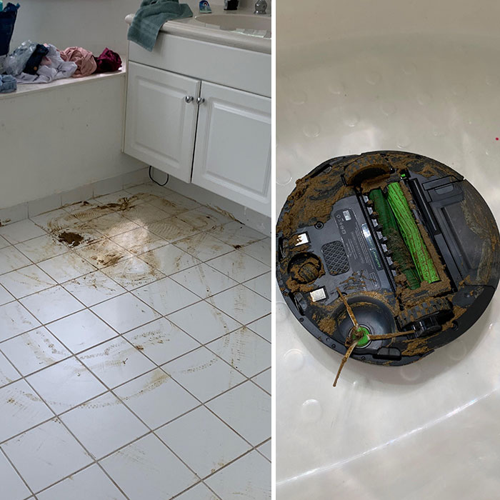 "My Brand New Roomba Ran Over My Puppy's Shit And Proceeded To ""Clean"" The Rest Of My Home"
