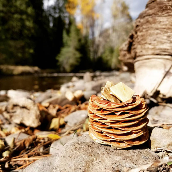 I Thought This Pine Cone Looked Like A Stack Of Pancakes, So I Made Some Butter Out Of Some Fallen Leaves