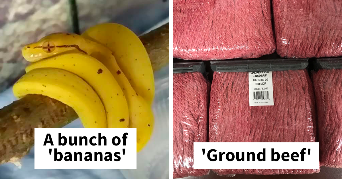 161 Times Totally Inedible Things Looked Like Delicious Food (New Pics)