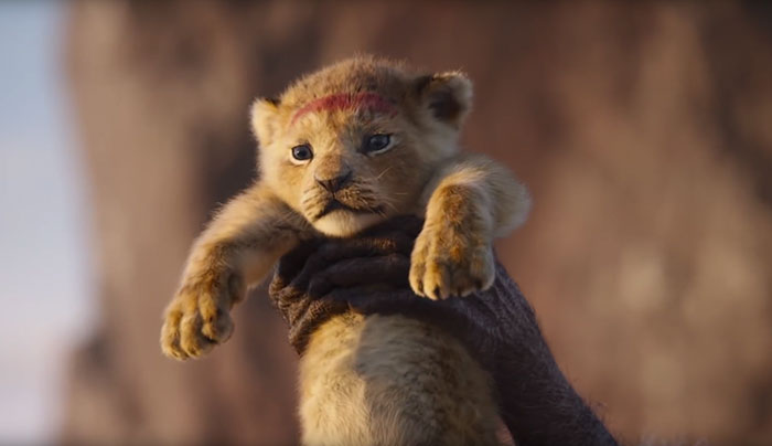 The New Lion King Posters Show Actors Facing Off Their