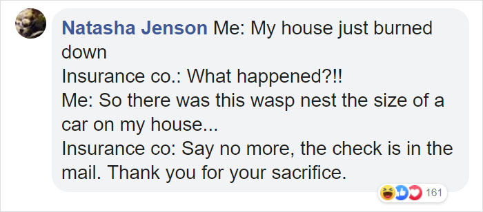 Wasps Are Building Massive Super Nests In Alabama And People Are