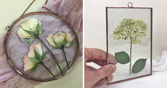 A Year Ago, I Picked Up A New Hobby Of Making Flower Herbariums And Here Is My Progress So Far