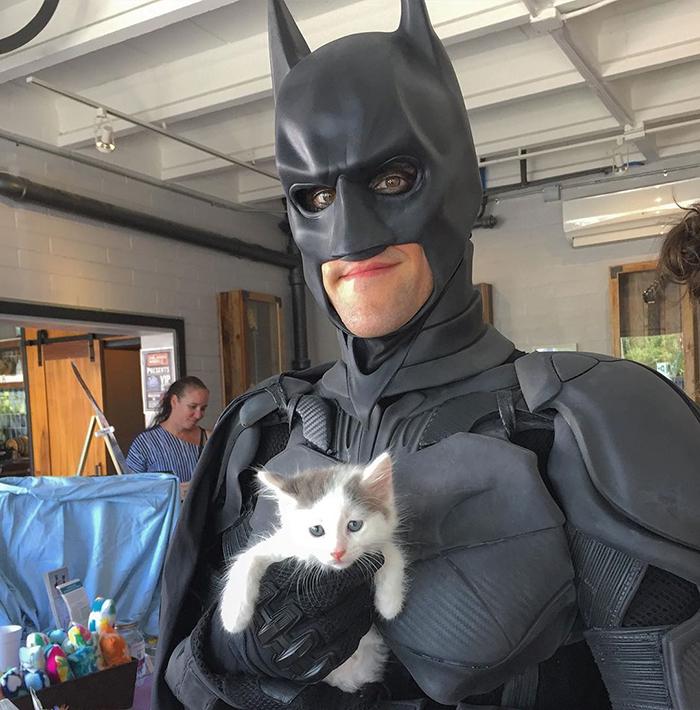 باتمان منقذ الحيوانات الاليفة