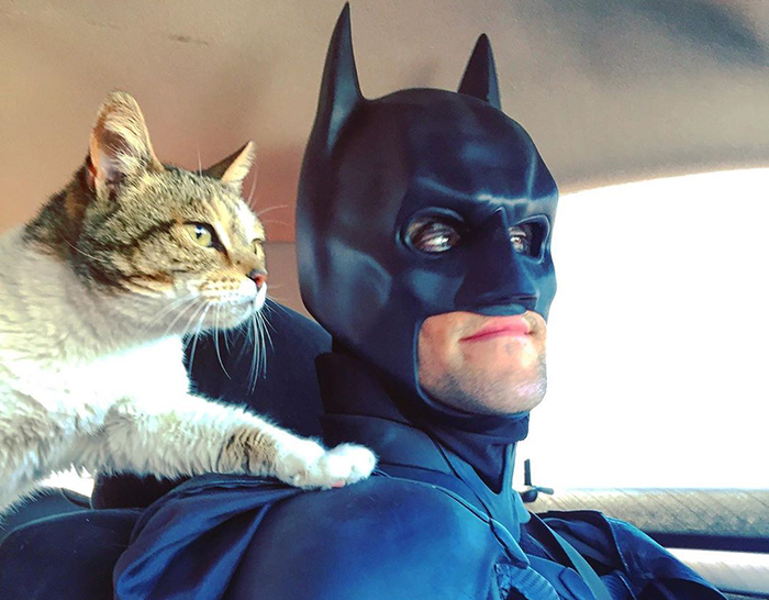 This Guy Dresses Up As Batman To Save Shelter Animals From Euthanasia And Find Them Loving Families