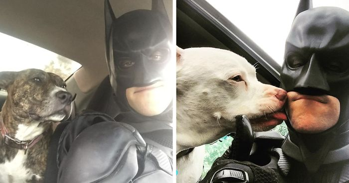 This Guy Dresses Up As Batman To Save Shelter Animals From