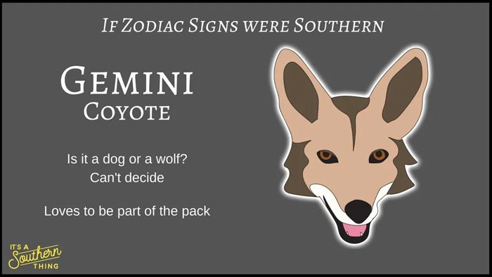 There's A Southern Version Of Zodiac Signs And The