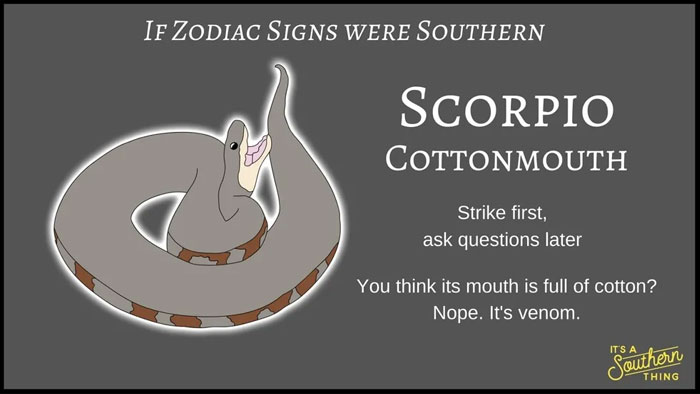 There's A Southern Version Of Zodiac Signs And The Descriptions Are Hilariously Accurate