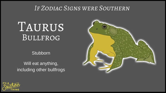 There's A Southern Version Of Zodiac Signs And The Descriptions Are