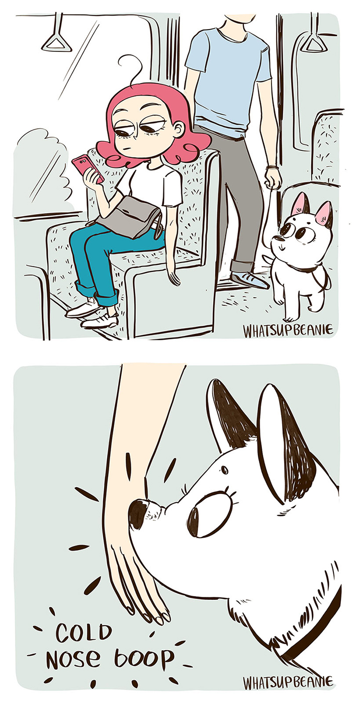 My 13 Wholesome Comics About Cats And Dogs