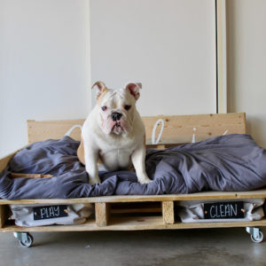 16 Pallet Dog Bed DIY Plans