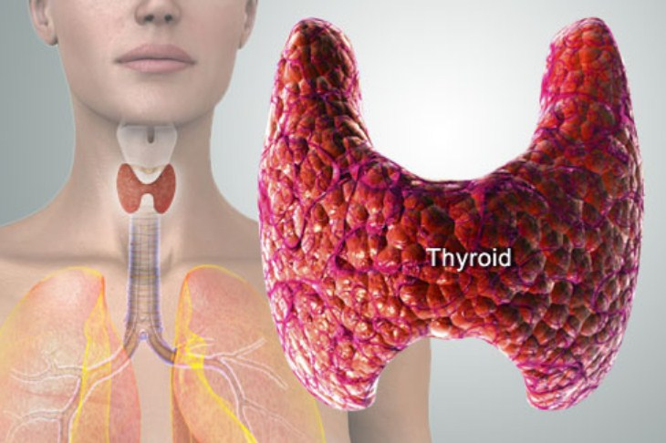 20 Reasons Your Thyroid Is More Important Than You Ever Imagined
