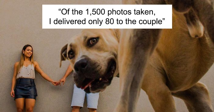 Couple Brings Their Dog To Their Pre-Wedding Photoshoot, And The