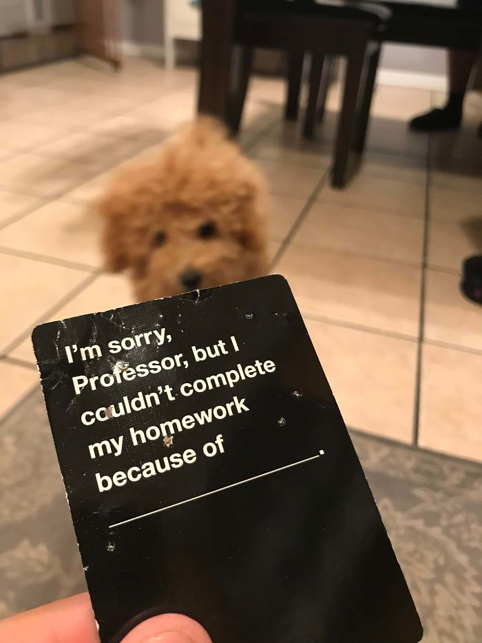 Ironic That My Pup Chewed Up This Specific Cards Against Humanity Card
