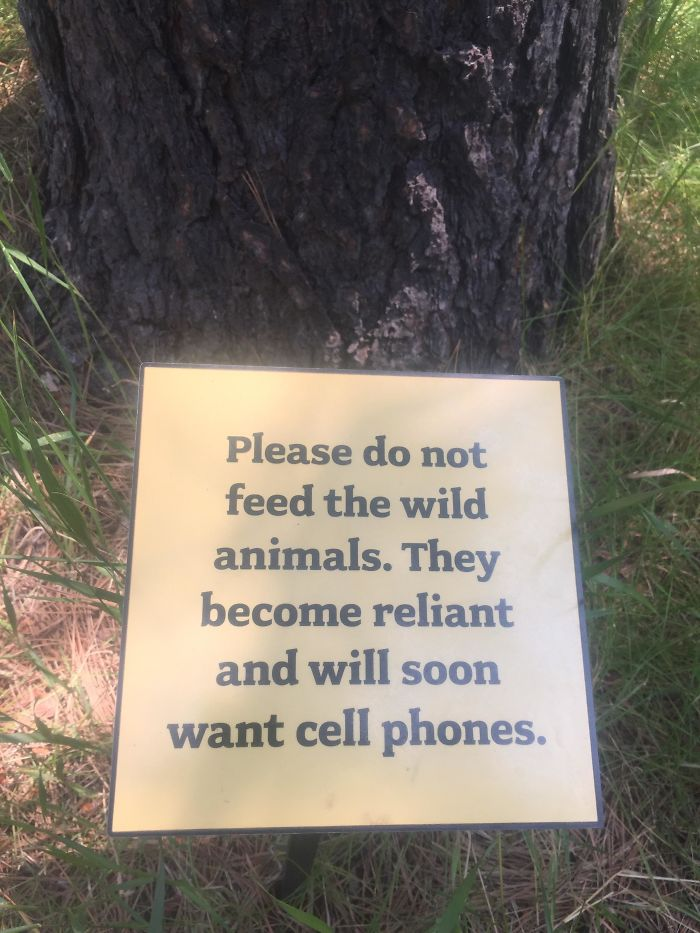 This Sign At An Outdoor Exhibit For A Museum