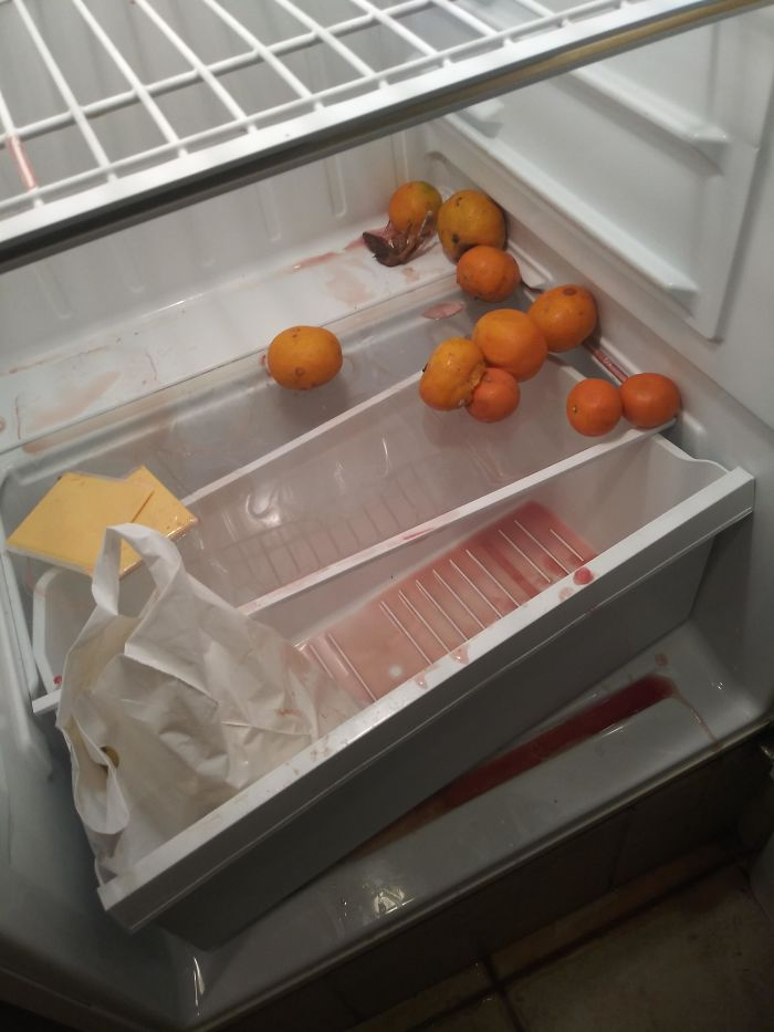 I Work As A Housekeeper At A Hotel. Had To Clean This Fridge Yesterday