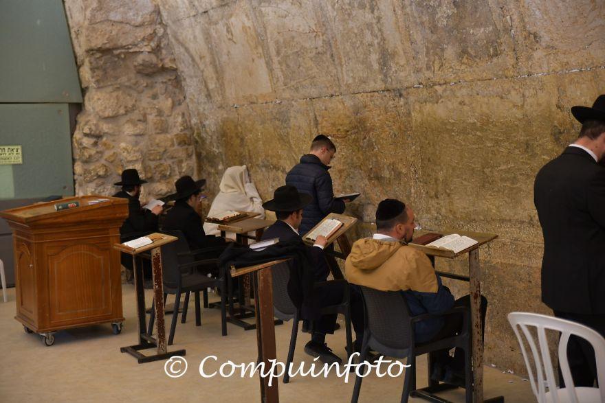 Jew Pray At The Western Wall In Jerusalem