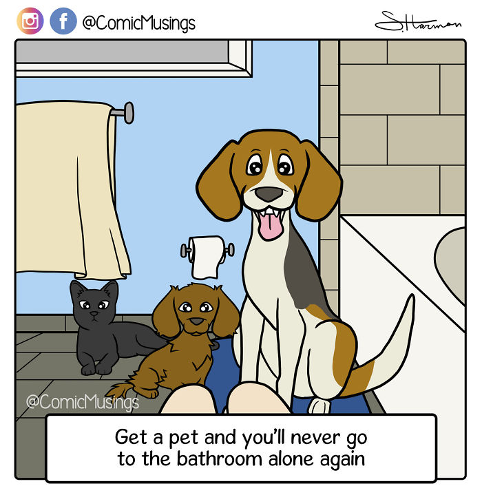 Get A Pet And You'll Never Go The Bathroom Alone Again!