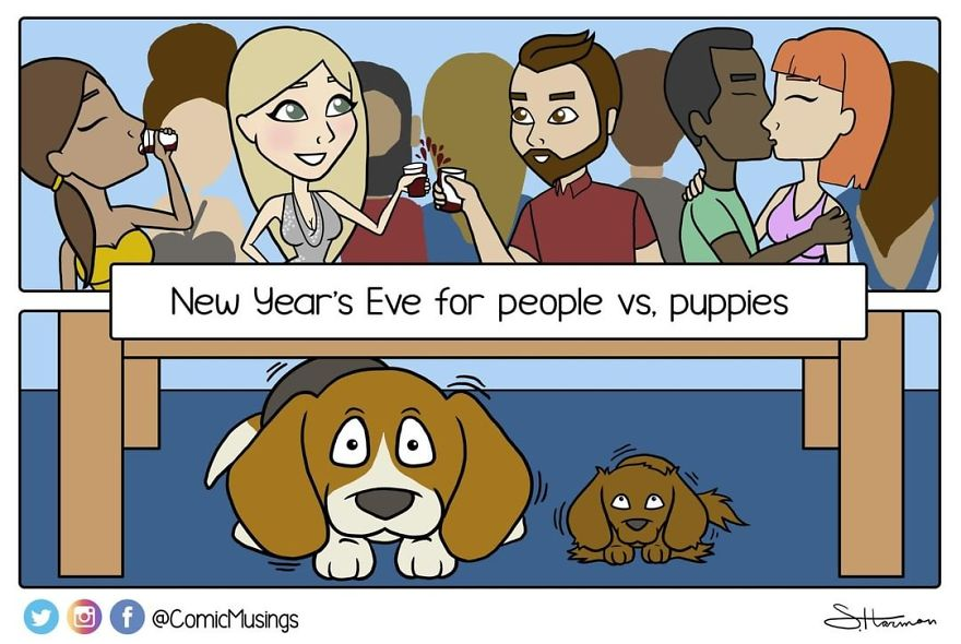 Take A Moment To Think Of Your Puppies Who Probably Think The World Is Ending