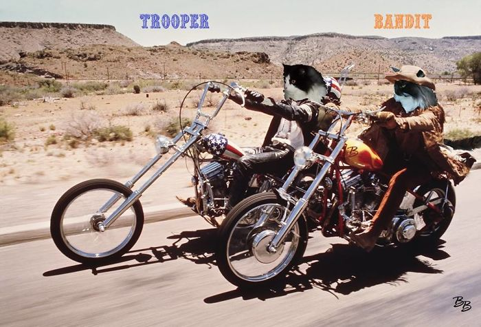 Brother & Sister From Easy Rider