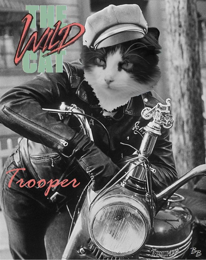 Trooper As Brando In The Wild One