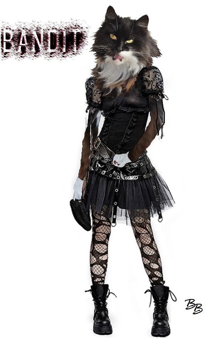 Bandit Loves Gothwear