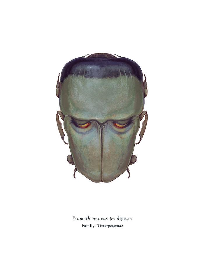 Prometheonovus Prodigium