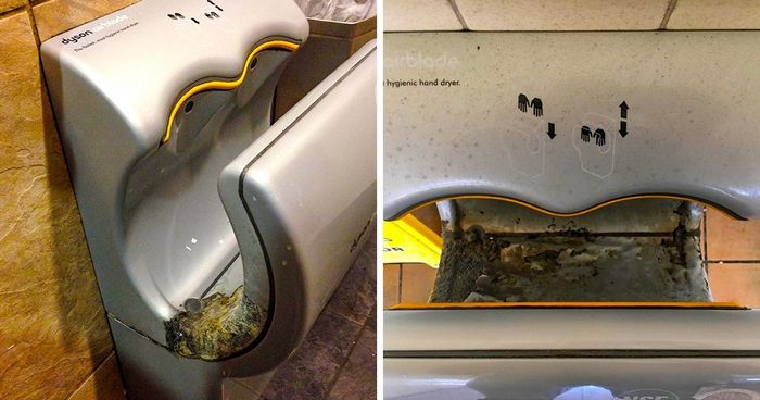 Scientists Explain Why Hand Dryers Are Harmful. Now You May Want to Ditch Them Forever