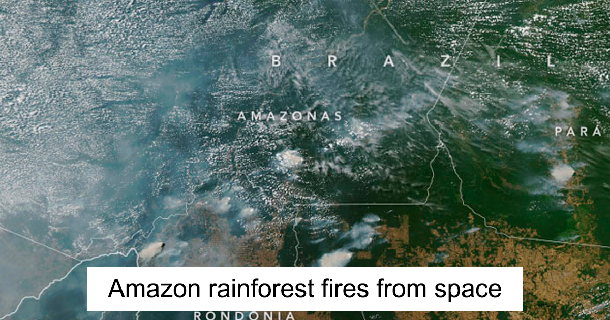 Amazon Rainforest Is On Fire And The Smoke Can Be Seen From The Space