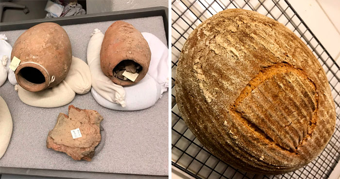 Scientist Bakes Bread From 4,500-Year-Old Yeast, Says The Flavor Is Incredible