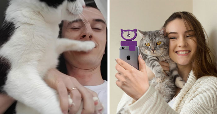 There's A Cat Selfie Device That Will Make Your Photos With Your Cat Simply Purrfect