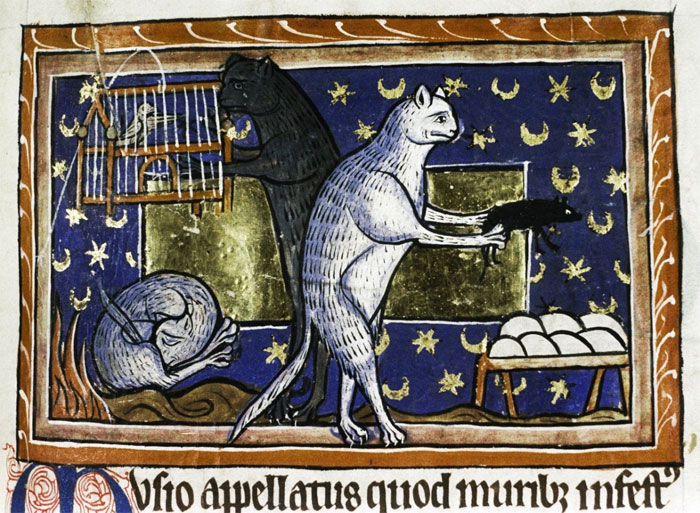 Funny-Medieval-Cats-Licking-Paintings