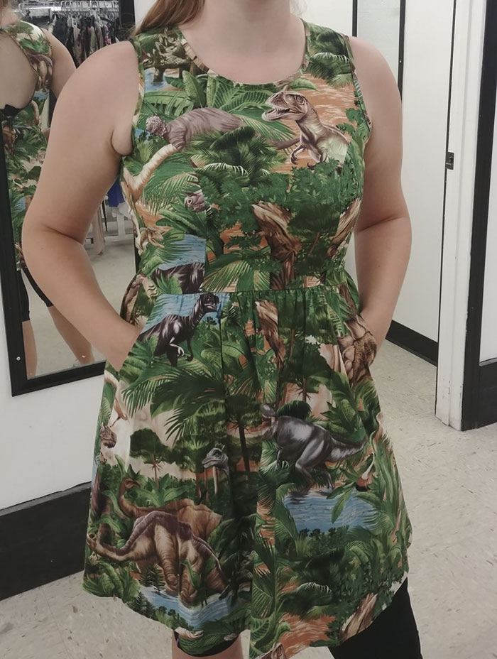 My Niece Found This Fabulous Dinosaur Dress At The Salvation Army Store Today. It Is So Cute On Her And It Did Go Home With Her