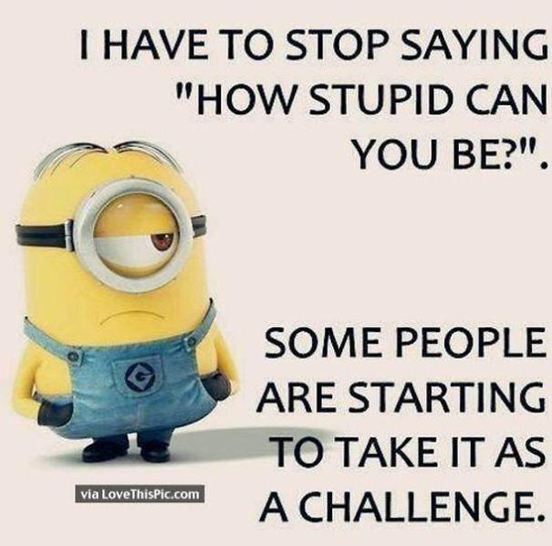 how-stupid-5d476bb862bf9.jpg