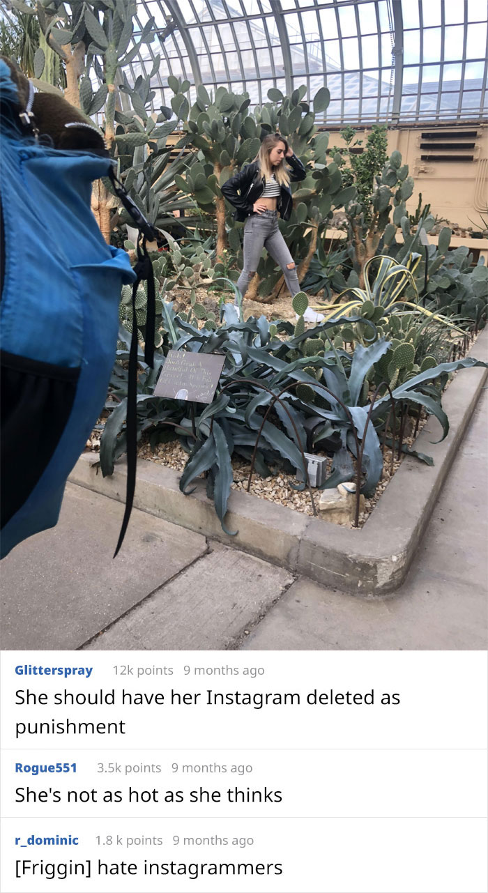 Woman Stomped All Over The Plants In This Conservatory For Instagram Shots Despite Staff Repeatedly Asking Her To Stop