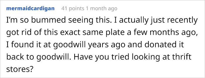 Girl Breaks The Only Plate Her Autistic Brother Eats Off Of, Asks For Help On Reddit And People Deliver