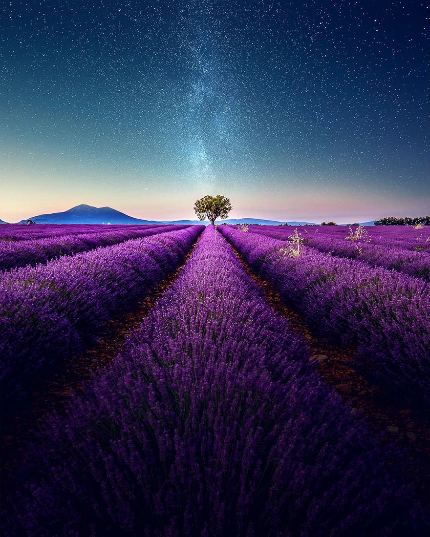 Breathtaking Aerial Photos Of A Lavender Field In Southern